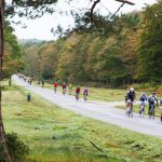 New Forest Wiggle Sportive